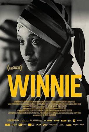 Винни (2017)