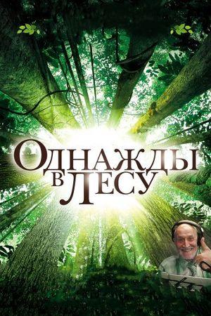 Однажды в лесу (2013)