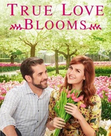 Когда расцветает любовь (2019)