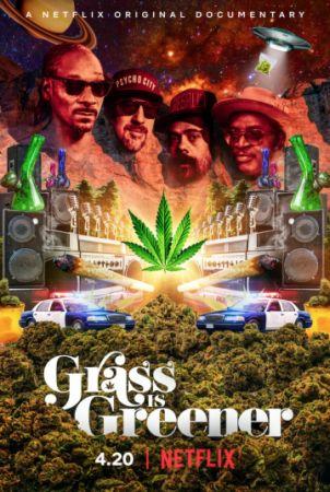 Трава зеленее (2019)