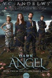 Темный ангел (2019)
