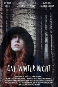 Однажды зимней ночью (2019)