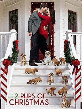 12 щенят Рождества (2019)
