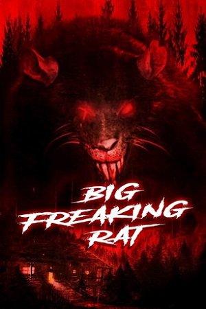 Большая жуткая крыса (2020)