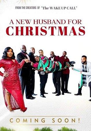 Новый муж на Рождество (2020)